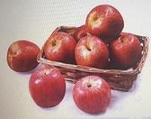 [COSCO代購] W221405 美國富士蘋果 2.4公斤 兩入