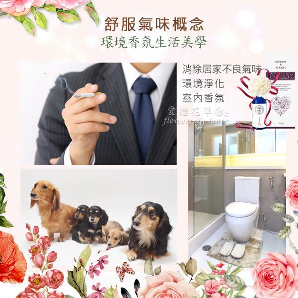 【愛戀花草】伊蘭花+玫瑰+夜來香+桂花 擴香精油 100ML / 四瓶組 (山茶花系列)