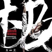 跆拳道服 極擎KICKING全新設計SWING銀翼款跆拳道道服兒童跆拳道服正式上線 薇薇