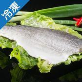 【產銷活凍】七星鱸魚片(大)250~300g【愛買冷凍】