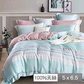 【貝兒居家寢飾生活館】頂級100%天絲鋪棉涼被