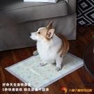 狗狗用品吸水墊寵物尿片除臭尿墊加厚貓尿布【小獅子】