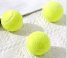 寵物玩具 網球狗狗玩具球耐咬大型犬發聲彈力小奶狗狗磨牙玩具幼犬寵【快速出貨八折搶購】