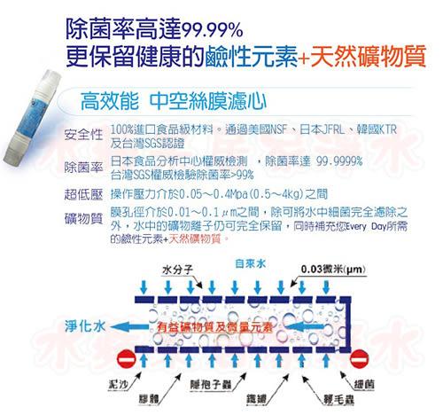 水蘋果居家淨水~快速到貨~Aqua Link 快接式小T~ UT-430 ( 全中空絲膜 )