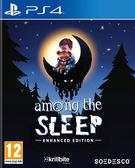 PS4 睡夢之中(簡體中文版)