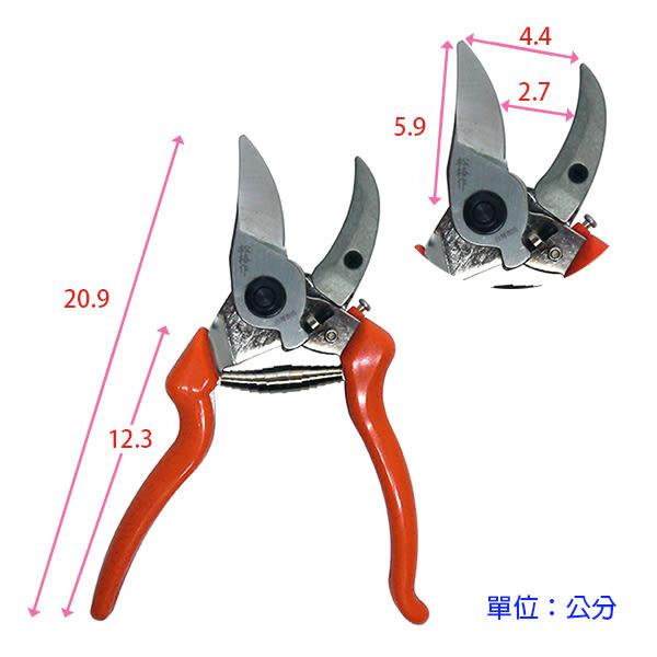【綠藝家】獅牌鍛造彎刃刀鉆剪(剪錠鋏.剪定鋏)型號SG-60