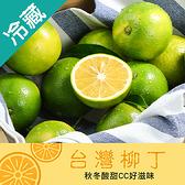 台灣柳丁23規 (16KG)/箱【愛買冷藏】