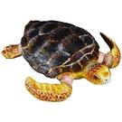 柯雷塔collectA 英國PROCON 海洋系列 赤觿龜 TOYeGO 玩具e哥