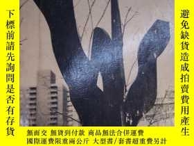 二手書博民逛書店CREATION罕見AND INTERPRETATIONY204