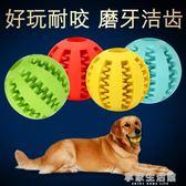 寵物玩具狗狗玩具橡膠球大狗耐咬玩具狗咬球泰迪金毛玩具磨牙玩具·享家生活館
