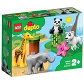 樂高積木 LEGO《 LT10904 》Duplo 得寶系列  - 野生小動物╭★ JOYBUS玩具百貨