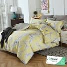 雙人 152x188cm 特頂100%天絲 60s500針紗 床包四件組(兩用被套)-傾睞【金大器】