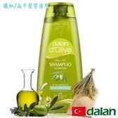 【土耳其dalan】橄欖油米麥蛋白豐盈洗髮露(纖細/扁平髮質專用)