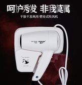 鴻申酒店賓館浴室衛生間家用干發器干膚器掛墻壁掛式電吹風機  魔方數碼館