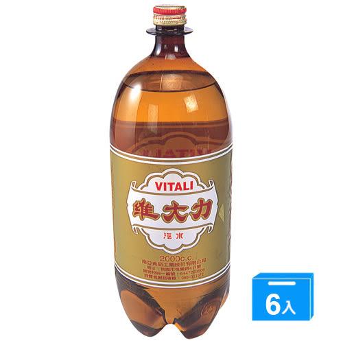 維大力汽水寶特瓶2000ml*6入/箱【愛買】