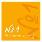 PIRASTRO NO.1小提琴E絃10入組-4/4十條裝/原廠公司貨
