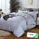 加大 182x188cm 特頂100%天絲 60s500針紗 床包四件組(兩用被套)-清怡【金大器】