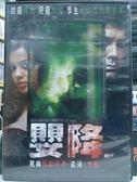 挖寶二手片-Y53-029-正版DVD-電影【嬰降】-嬰靈降世惡靈附體 孿生姊妹成代罪羔羊