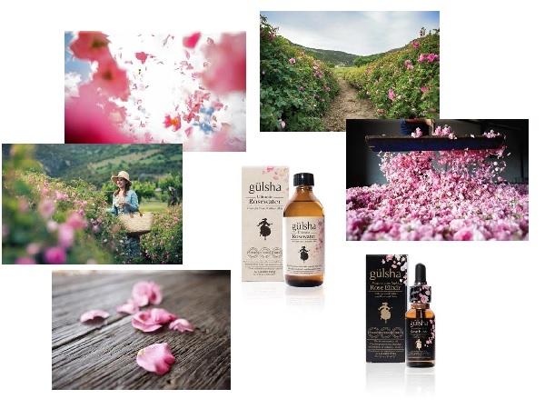 *加贈* gulsha古爾莎完美新生玫瑰精露:玫瑰精油結合玻尿酸與胜肽的夜用精華液、護膚保養美容油