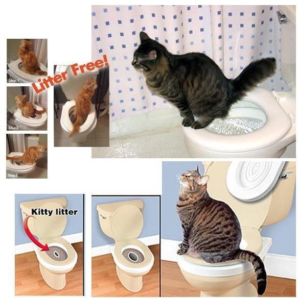 貓用坐便墊馬桶墊馬桶坐便訓練器  199元
