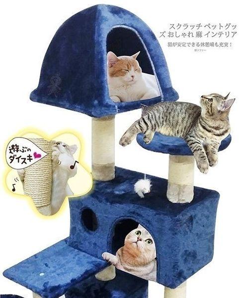 *King Wang*含運-日本寵喵樂《豪華方塊 貓跳台/貓爬窩/貓抓》 TW003