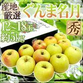 【果之蔬-全省免運】日本青森名月蜜蘋果x1箱(12-18顆/箱 每箱約5kg±10%含箱重 )