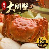 台灣珍稀大閘蟹*8隻組-死蟹包退(4-4.5兩/隻)(食肉鮮生)