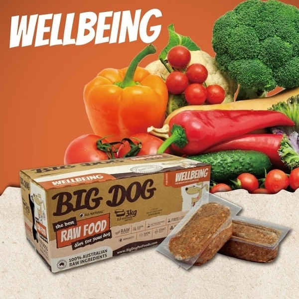 *KING WANG*【免運】(1盒12片入)澳洲BIG DOG(BARF)巴夫《犬用生食肉餅-樂活低脂》