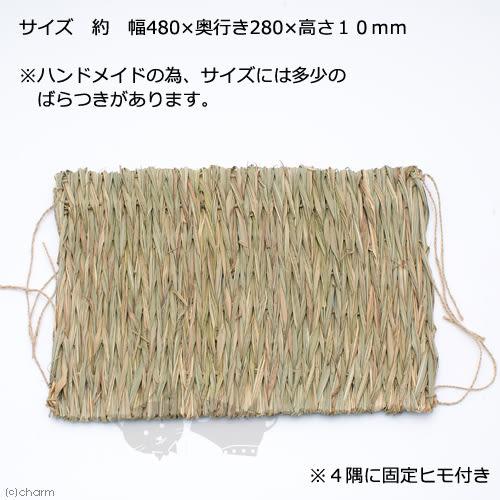 PetLand寵物樂園《日本MARUKAN》兔用專用牧草踏墊(L號)ML-109/可睡可吃可安撫情緒/籠內牧草兔墊