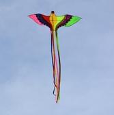 風箏成人大型2風箏初學者線輪