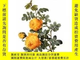 二手書博民逛書店The罕見Art Of Botanical IllustrationY255562 Wilfrid Blunt