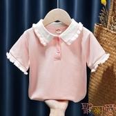 兒童韓版短袖POLO領休閒T恤上衣夏裝【聚可愛】