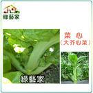 【綠藝家】A27.菜心種子1000顆(大心芥菜)