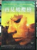 挖寶二手片-P04-086-正版DVD*電影【再見橄欖樹】-安娜卡斯提洛*哈維爾古鐵雷茲*佩普安布羅斯*曼努