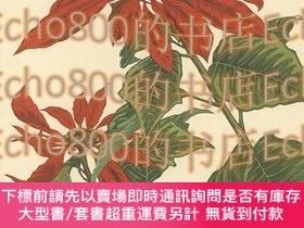 二手書博民逛書店ポインセチア(假題)Poinsettia罕見(tentative title)Y461087 船崎光治郎Fun
