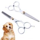 寵物美容剪刀 寵物美容 美容剪刀 修毛刀 平剪 打薄 寵物美容器具 現貨 米荻創意精品館