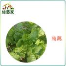 【綠藝家】A01.茼蒿種子5000顆 (圓葉種)
