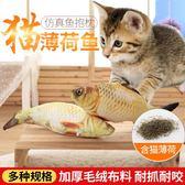寵物玩具 貓玩具魚貓薄荷魚磨牙玩具寵物毛絨仿真抱枕用品魚玩具 mc4368『M&G大尺碼』