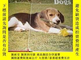 二手書博民逛書店罕見Dogs-狗Y346464 A J Barker, H A B... Published by Magn.