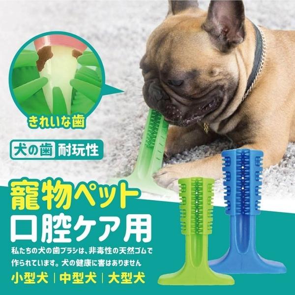 【全館批發價!免運+折扣】中型犬 護齒潔牙棒 寵物潔牙 磨牙 寵物玩具 寵物用品護齒【BE414】