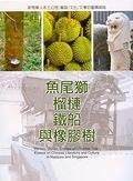 二手書博民逛書店 《魚尾獅榴槤鐵船與橡膠樹》 R2Y ISBN:9789575497569│王潤華