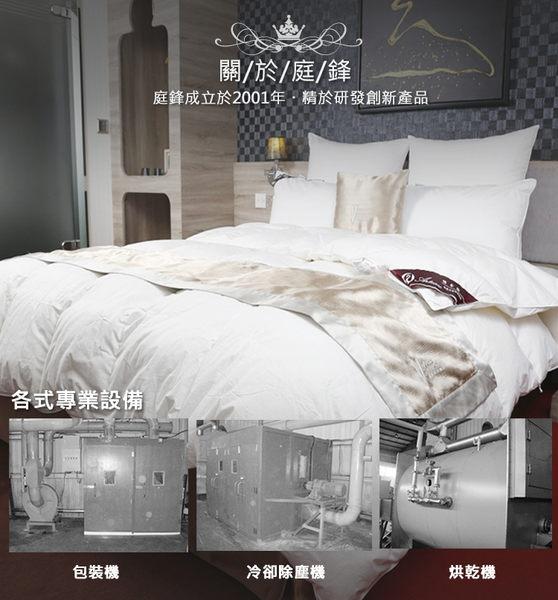 【雅帝格】買被送枕!   FP500羽絨柔絲蓄熱、保暖高級冬季羽絨被 -加大