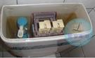 【麗室衛浴】澳洲 CAROMA 413295 413298 馬桶 新款排水器 不含按鈕
