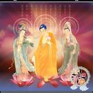 西方三聖捲軸掛圖(2呎)紅   【十方佛教文物】