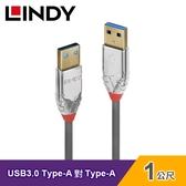 【LINDY 林帝】USB 3.0 TYPE-A公 對 TYPE-A公 傳輸線(1M)