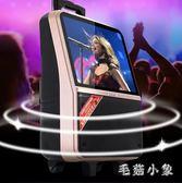 便攜式藍牙視頻播放器移動拉桿大功率家用無線話筒戶外音箱 ys5458『毛菇小象』