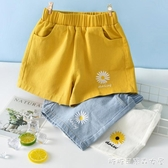 新款洋氣女童男童牛仔短褲五分夏季薄款外穿百搭兒童夏裝大童快速出貨