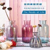 玻璃花瓶創意客廳擺件富貴竹水培插花干花