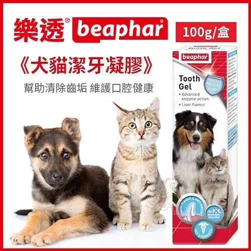 *KING WANG*荷蘭beaphar 樂透《犬貓潔牙凝膠》100g/盒 幫助清除齒垢 維護口腔健康