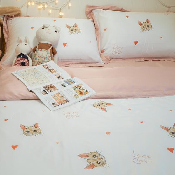 天絲床組 喵喵物語 S4 單人薄床包鋪棉兩用被三件組(60支) 100%天絲 棉床本舖
